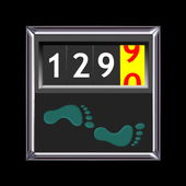 Walking Odometer Pro icône