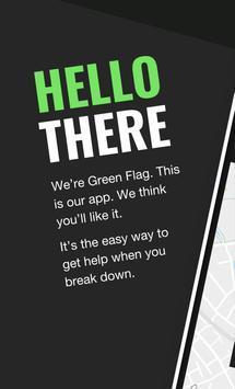 Green Flag poster