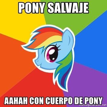 Pony Salvaje Boton poster