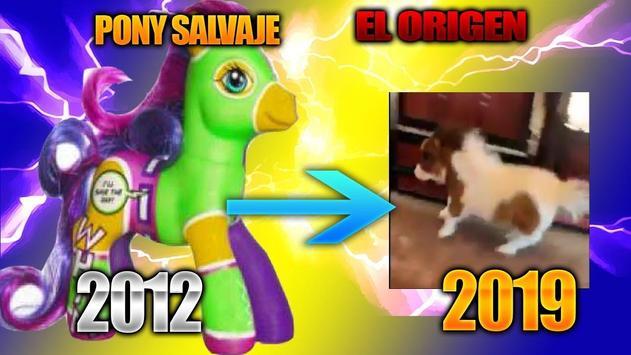 Pony Salvaje Boton screenshot 3