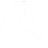 DNK Infra Survey icon
