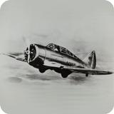 Fighter aircraft World War II