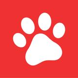 Dogalize - Pet Social Network
