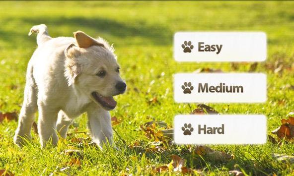 Dogs Memory Game Free screenshot 1