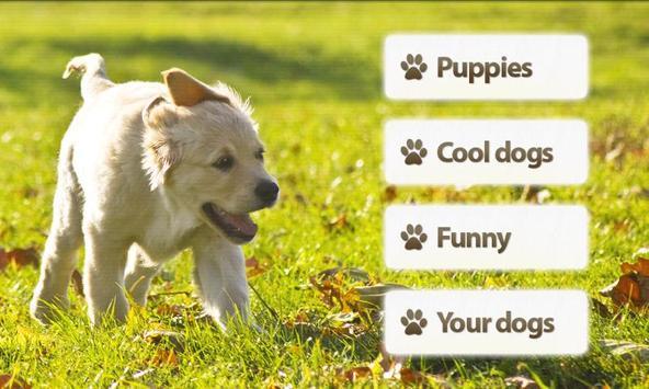 Dogs Memory Game Free screenshot 2