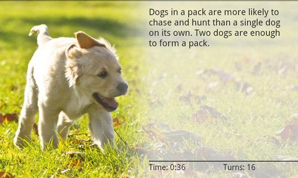 Dogs Memory Game Free screenshot 6