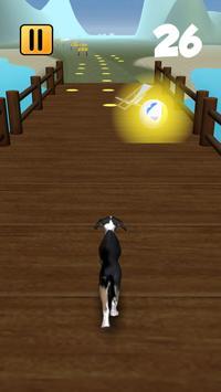 Run'n Fetch screenshot 1