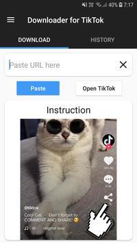 Downloader for TikTok plakat