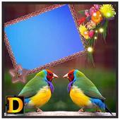 Gouldian Finch Bird Photo DP icon
