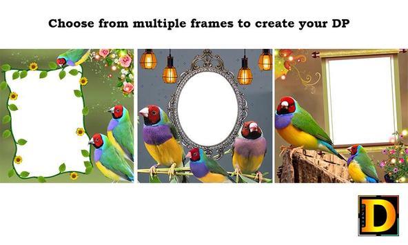 Gouldian Finch Bird Photo DP poster