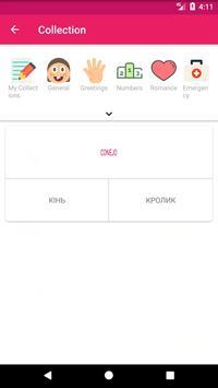 Spanish Ukrainian Offline Dictionary & Translator screenshot 4
