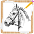 How to Draw Horses - Easy Drawing Step by Step