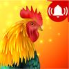 Animals: Ringtones icon