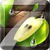 Fruit Slice ikona