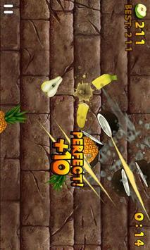 Fruit Slice スクリーンショット 5