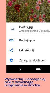 Dropbox screenshot 1