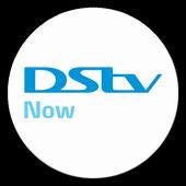 DStv Now icon
