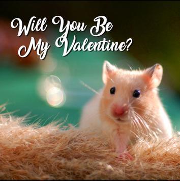 Happy Valentine's day 2019 Photo Frame & Wishes screenshot 7