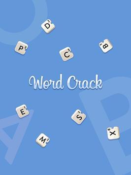 Word Crack-poster