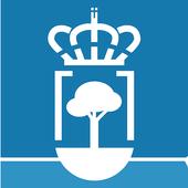 Ayuntamiento de O Pino icon