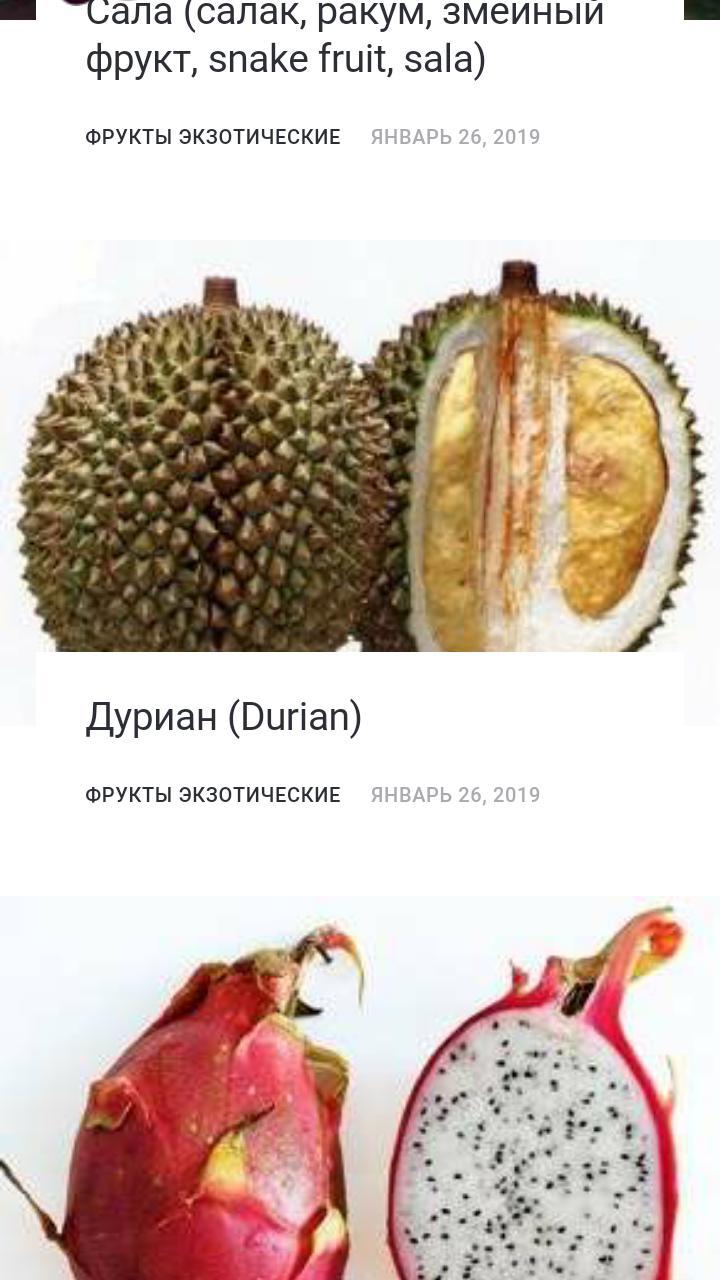Фрукты экзотические poster