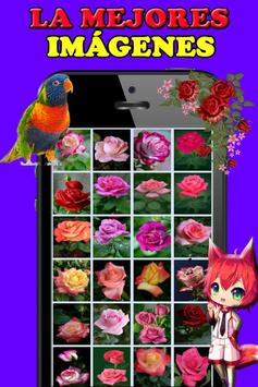 Rosas y Flores de Colores para Enamorar screenshot 9