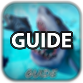 Feed and grow - fish Tips icon