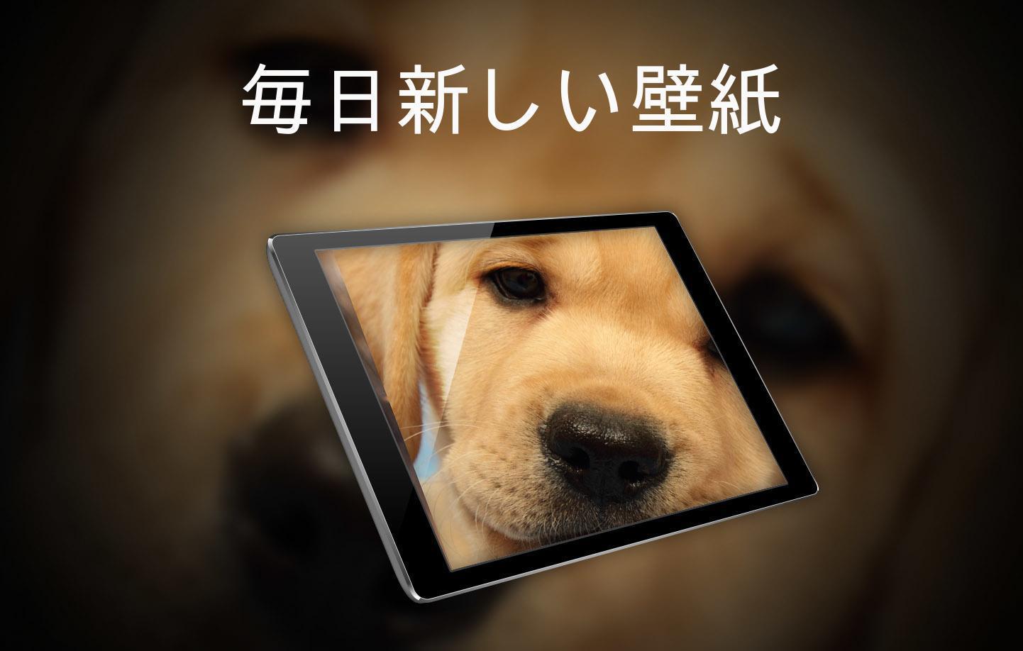 Android 用の かわいい動物の壁紙 Apk をダウンロード