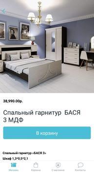Раевская мебель screenshot 1
