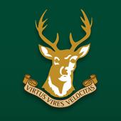 Ballynahinch RFC icon