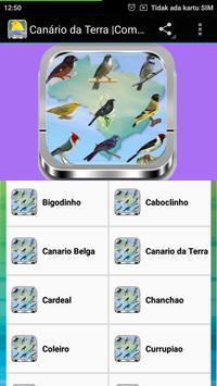 Canto De Bigodinho Mp3 screenshot 2