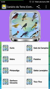 Azulão Canto Paraná |Completos screenshot 2