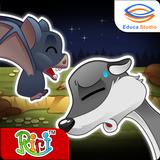 Bats and Ferrets