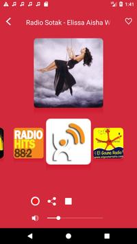 Egyptian Radio - Live FM Player poster