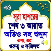 সূরা হাশরের শেষ তিন আয়াত (অফলাইন অডিও) icon