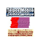 (주)텔로스소프트(TELPOS) 경영정보 시스템 icon