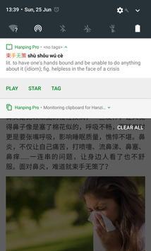 Hanping Chinese Dictionary Lite 汉英词典 screenshot 14