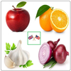 Vegetables and Fruits Vocabulary icône