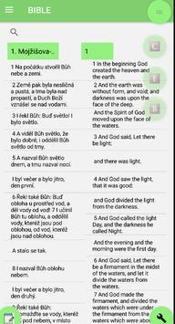 Czech Bible English Bible Parallel poster