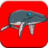 Fun Whale & My Dolphin Show Game For Kids Free 🐬 icon