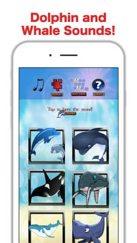 Fun Whale & My Dolphin Show Game For Kids Free 🐬 poster