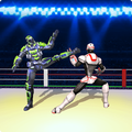 Ultimate Ring Fighting -  Robot Fight Wrestling