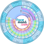 Pregnancy Weeks Calculator by Facemama
