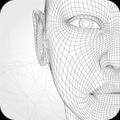 Golden Face - Golden Ratio Face - Score Your Face