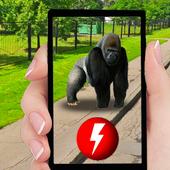 Pocket Apes GO icon