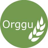 Orggu icon