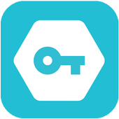 Secure VPN-icoon