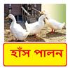 হাঁস পালনের সঠিক পদ্ধতি ~ Duck Farming icon