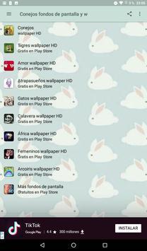 Conejos fondos de pantalla y wallpaper HD screenshot 4
