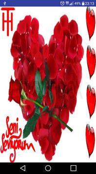 Seni Seviyorum Sözleri poster